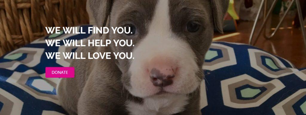 Big Love Animal Rescue